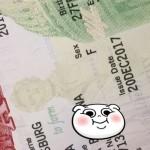 первичная виза в США